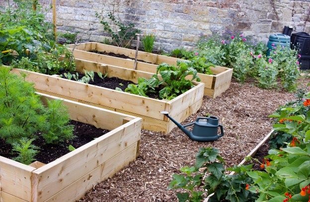 Raised garden beds in Wolverhampton