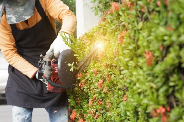 Garden landscaping - Weston Sawmill