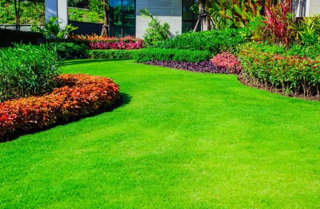 micro-climate garden landscaping